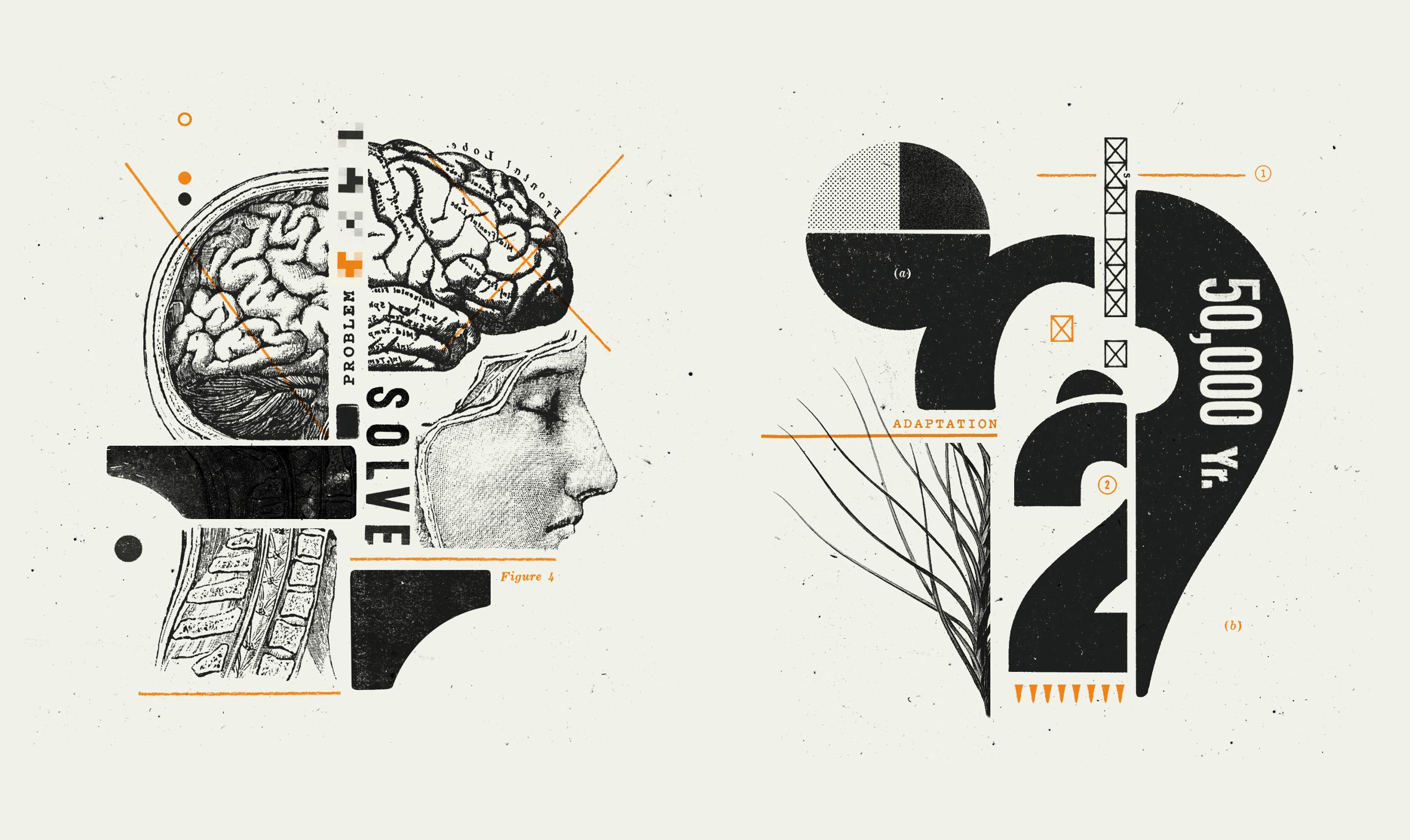 Wired — Are You A Genius - McQuade